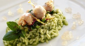 Herb Risotto