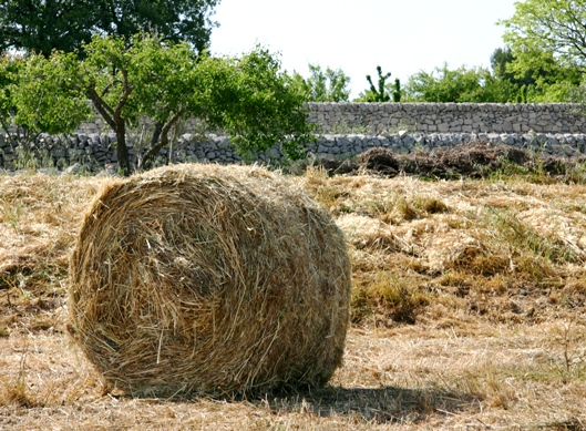 Hay bale & stone walls