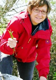 Anita forages wild asparagus in Sicily