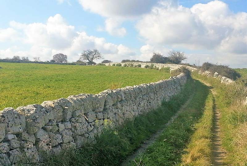Stone wall next to path in field