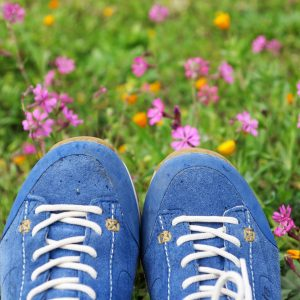 Blue suede hiking shoes in wildflowers